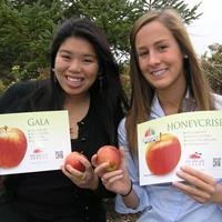 Meet the Michigan Apple Interns