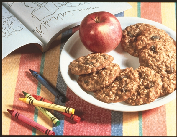 Oat Raisin Applesauce Cookies
