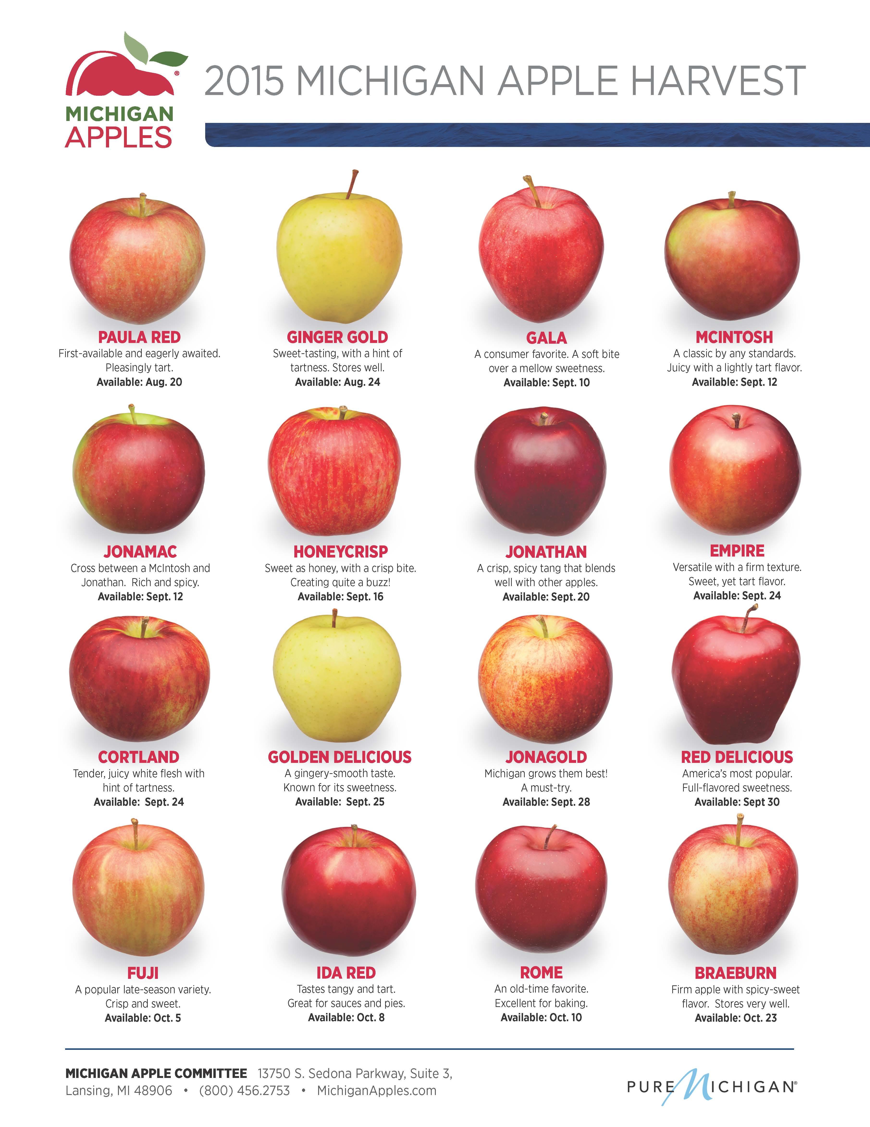 2015 Michigan Apple Harvest Michigan Apple Committee