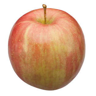 Michigan Fuji apple